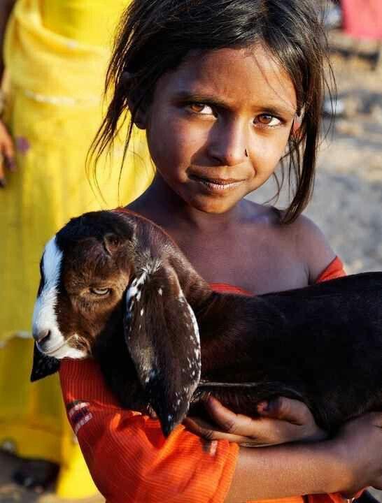India, I love goats