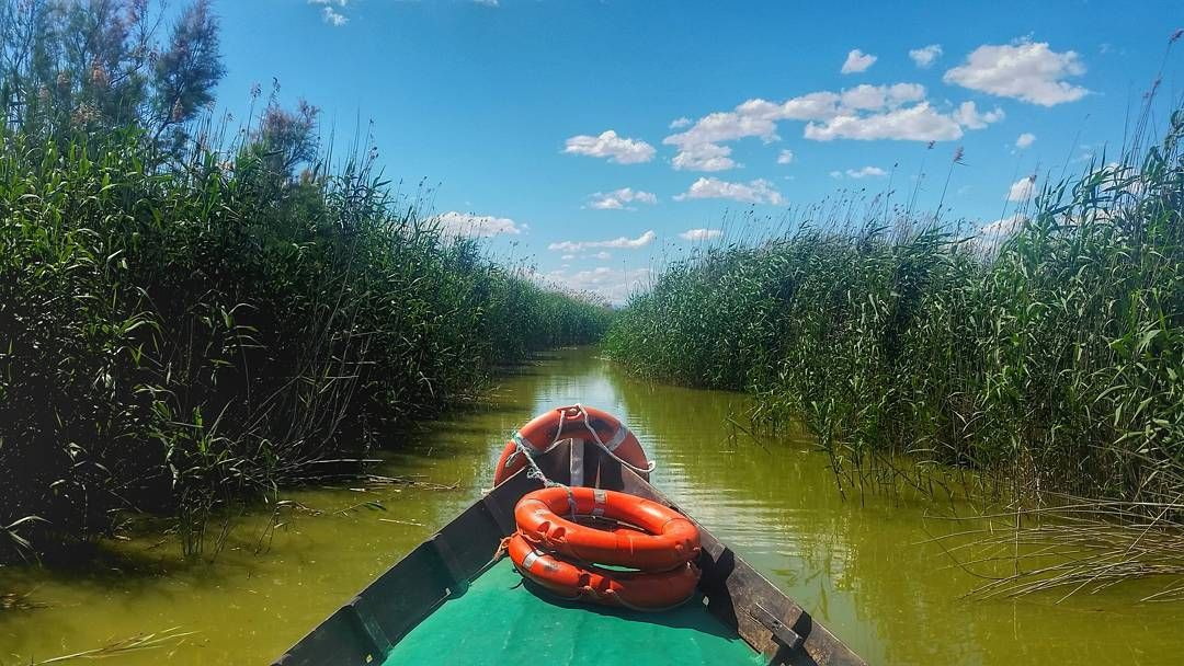 This boat took me into the #Albufera lake yesterday... but before I continue with that story I have a question for you for my next mission in the next post!  I'll need your help... #ValenciaChallenge #ValenciaTurisme