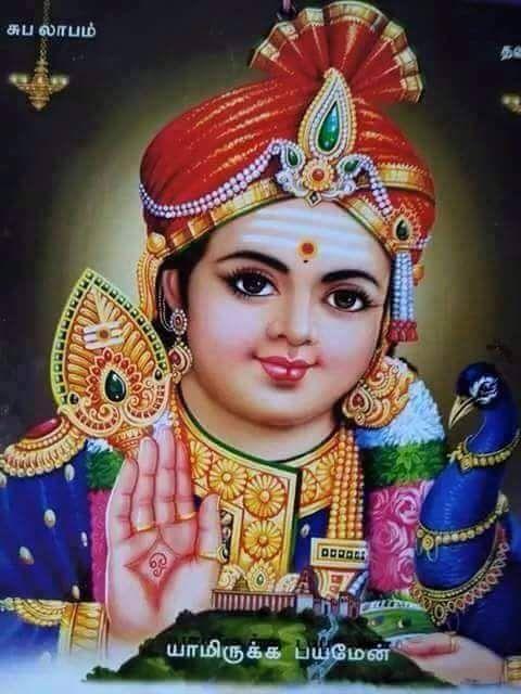 Murugar Lord Murugan Wallpapers Lord Shiva Family Lord Shiva Hd Images