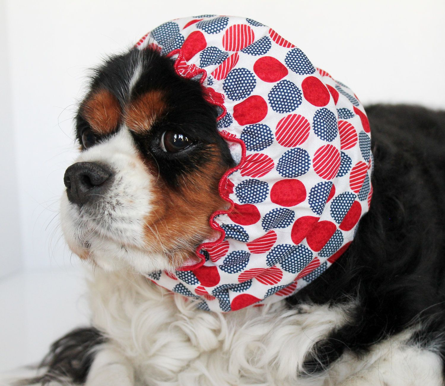 Cavalier Rescue USA Dog Snood / 100 Donation to by
