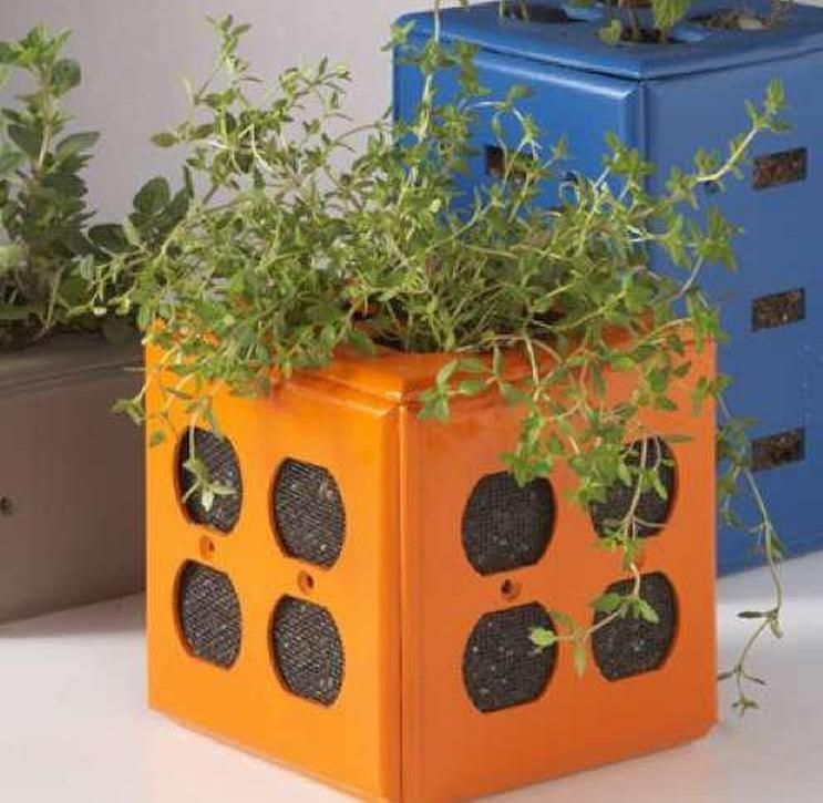 Electrical Outlets Repurposed As Flower Pots Upcycled