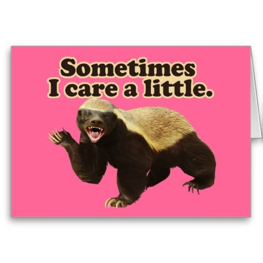 Funny Honey Badger cards and gifts. Sometimes he cares a little. Most of the time Honey Badger don't give a shit, but on occasion he cares just a little. A new twist on the Honey Badger by CyKosis