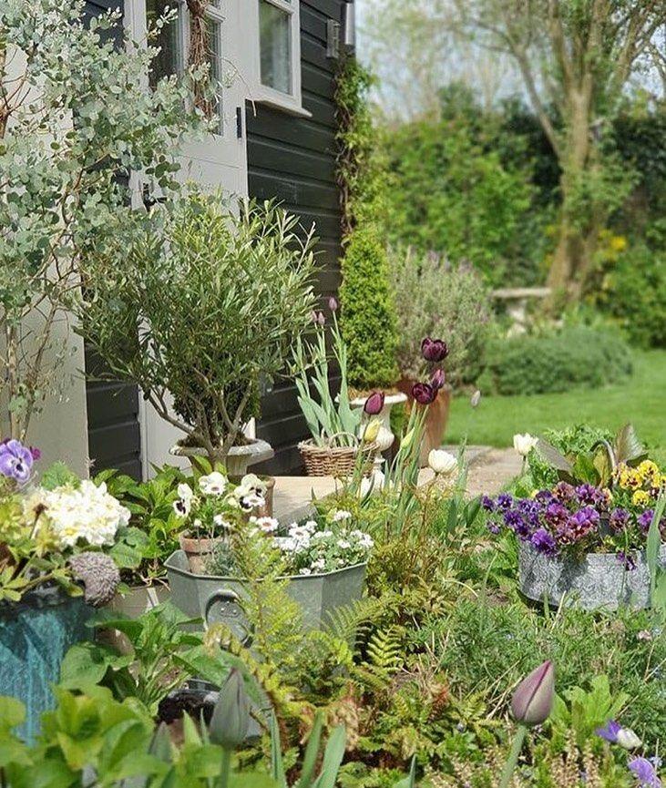 """Small Magical Garden Spaces on Instagram: """"💚🌿🍃 #smallmagicalgardens #gardendesign #gardening  #ferns #cottagegarden #gardeninspiration 📷repost @lauras_flowers"""""""