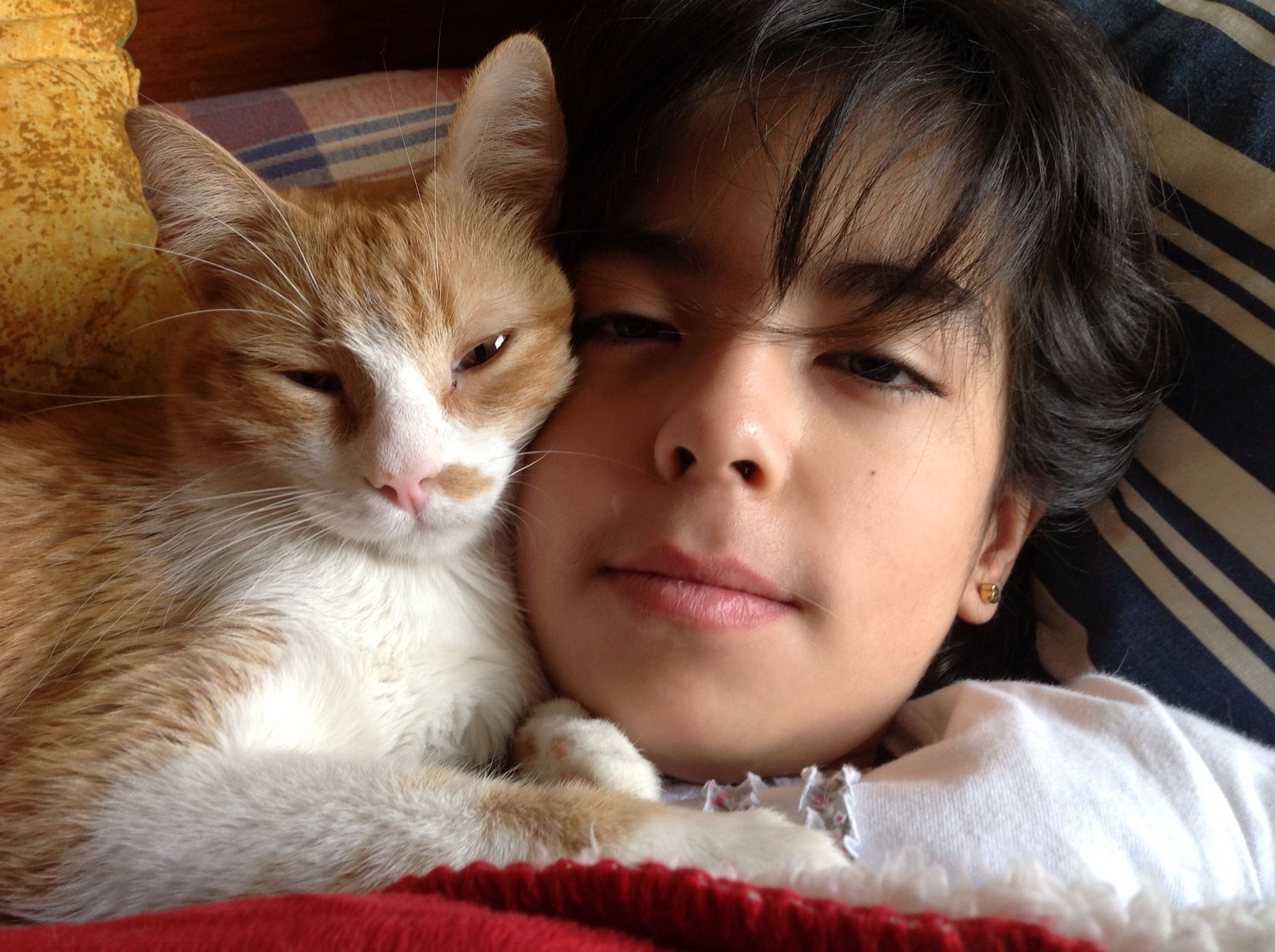 Pet Love Kid And Cat Kids With Cats D Pinterest