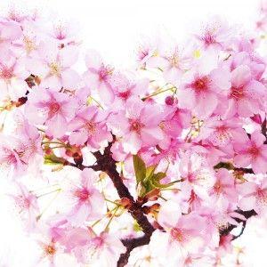Start over for Spring! You will feel SO SO much better