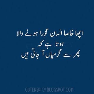 Best Funny Whatsapp Status in Urdu to Make Your Day | Urdu Quotes
