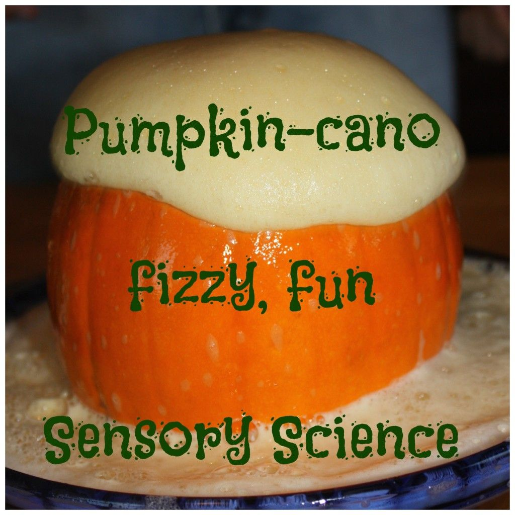 Exploding Pumpkin Volcano Science Activity With Images