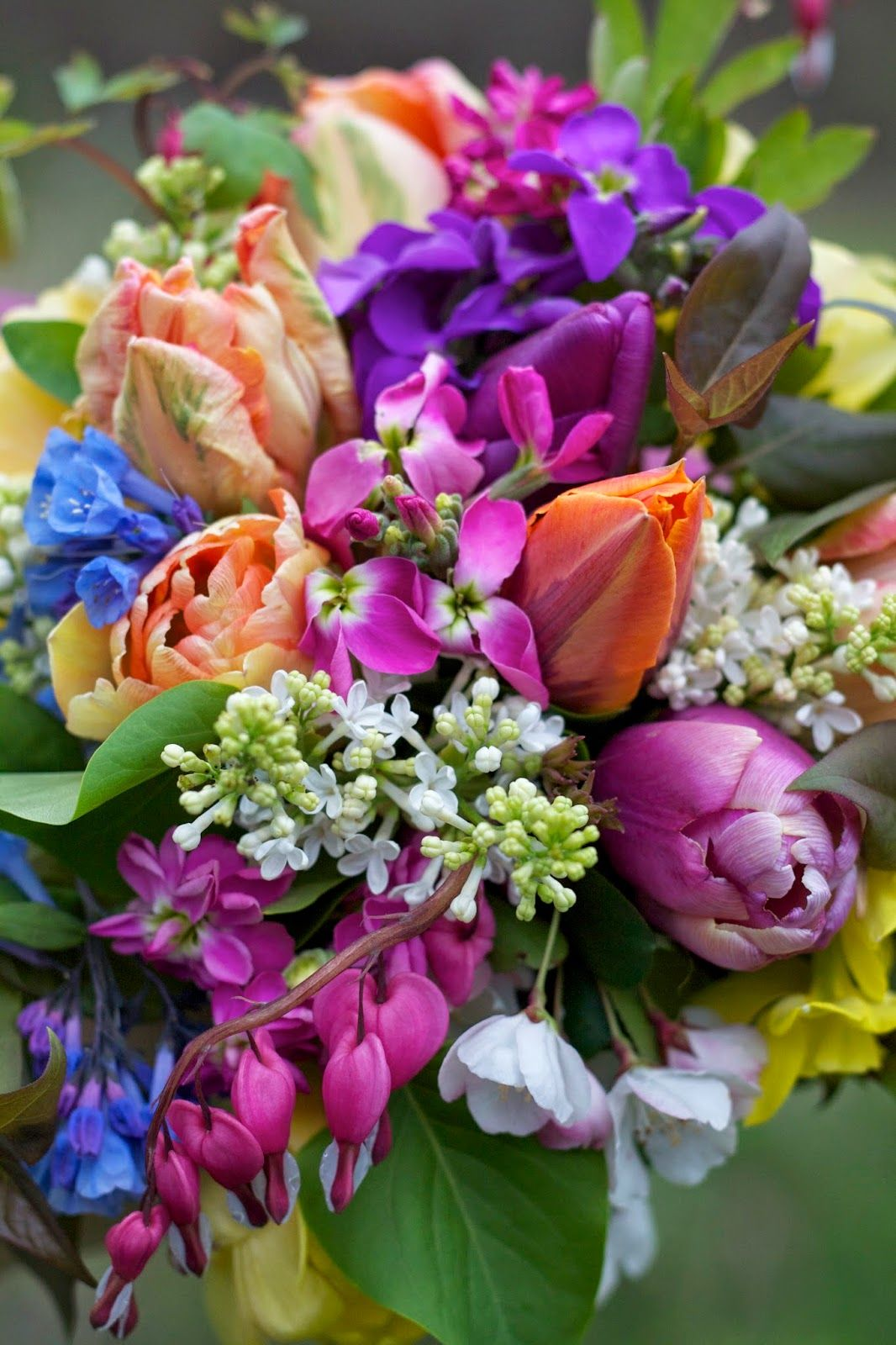 Bright Spring Bouquet. Virginia Bluebells, Bleeding Hearts ...