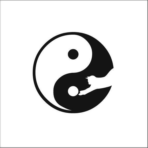 chatte Yang