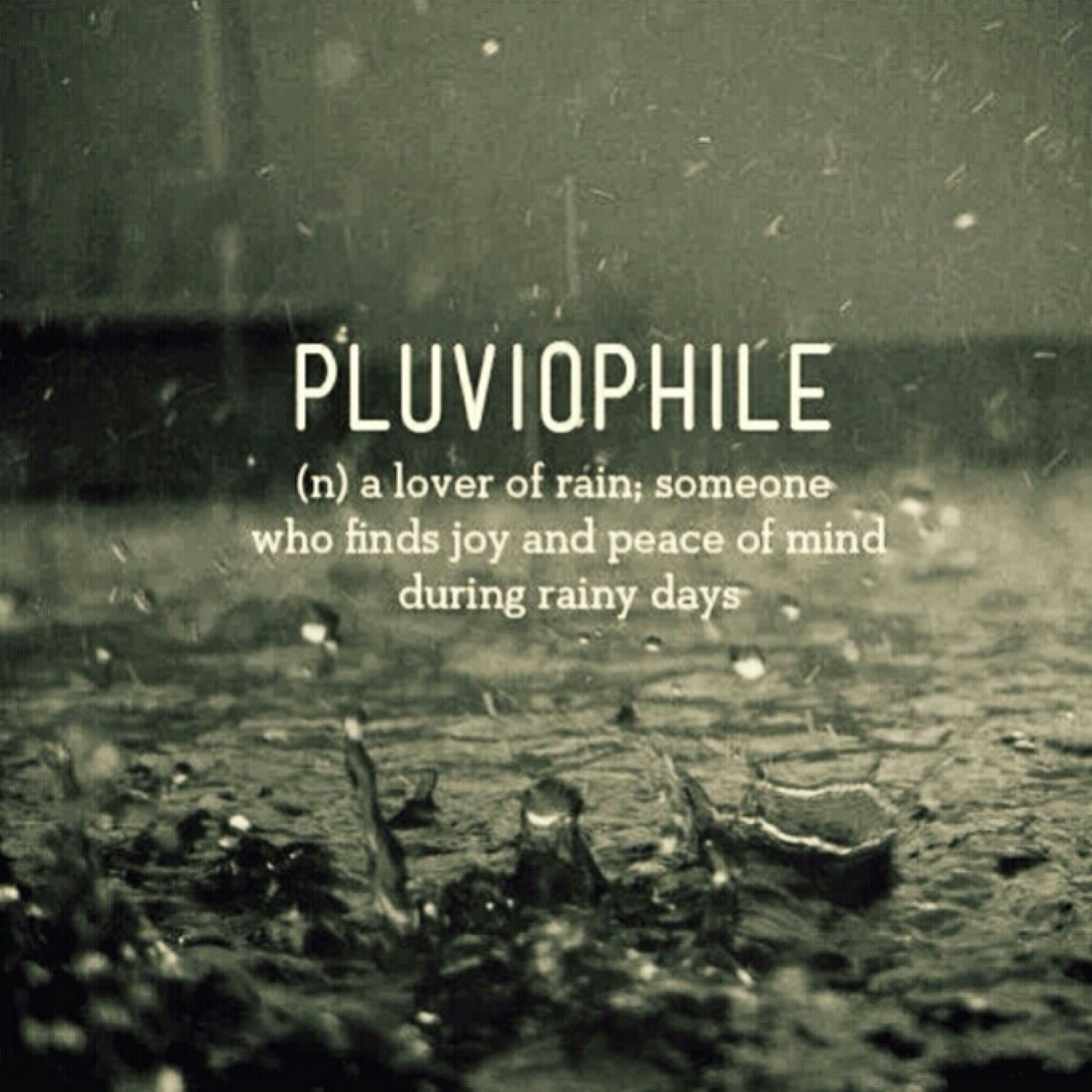 Quote Definition Pluviophile A Lover Of Rain Someone Who Finds