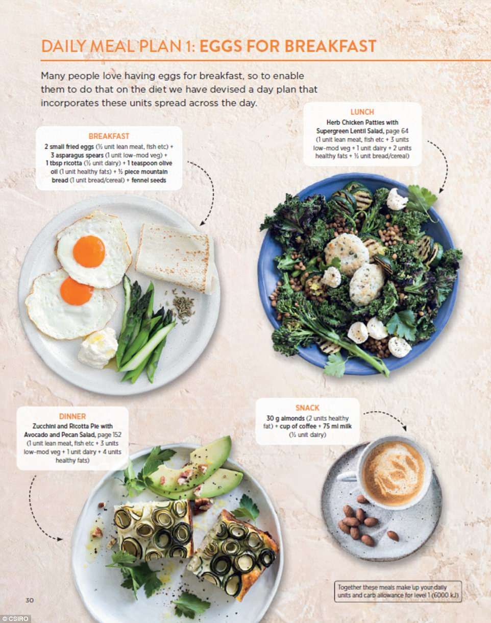 Sciencebased CSIRO reveals how to build daily lowcarb