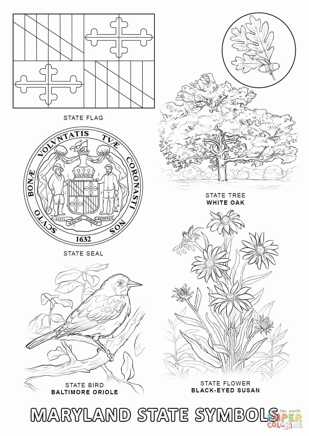 Oregon State Flag Coloring Page New Iowa Flag Coloring Pages Fresh