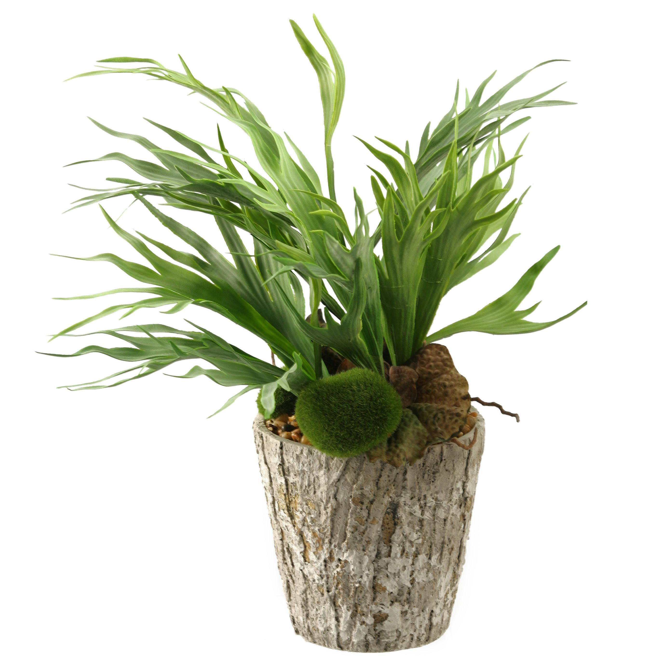 D&W Silks Mini Staghorn Fern In Weathered Oak Look Cement