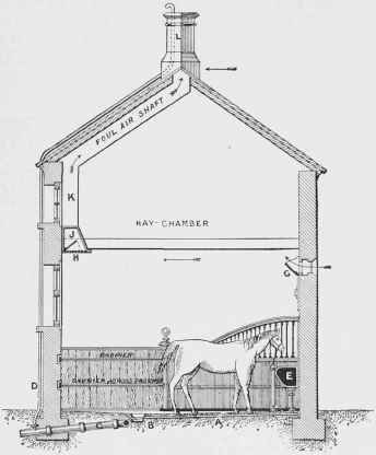 Section through Stable and Hayloft, showing Drainage and