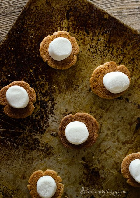 use peanut butter cookies instead of graham crackers for s'mores