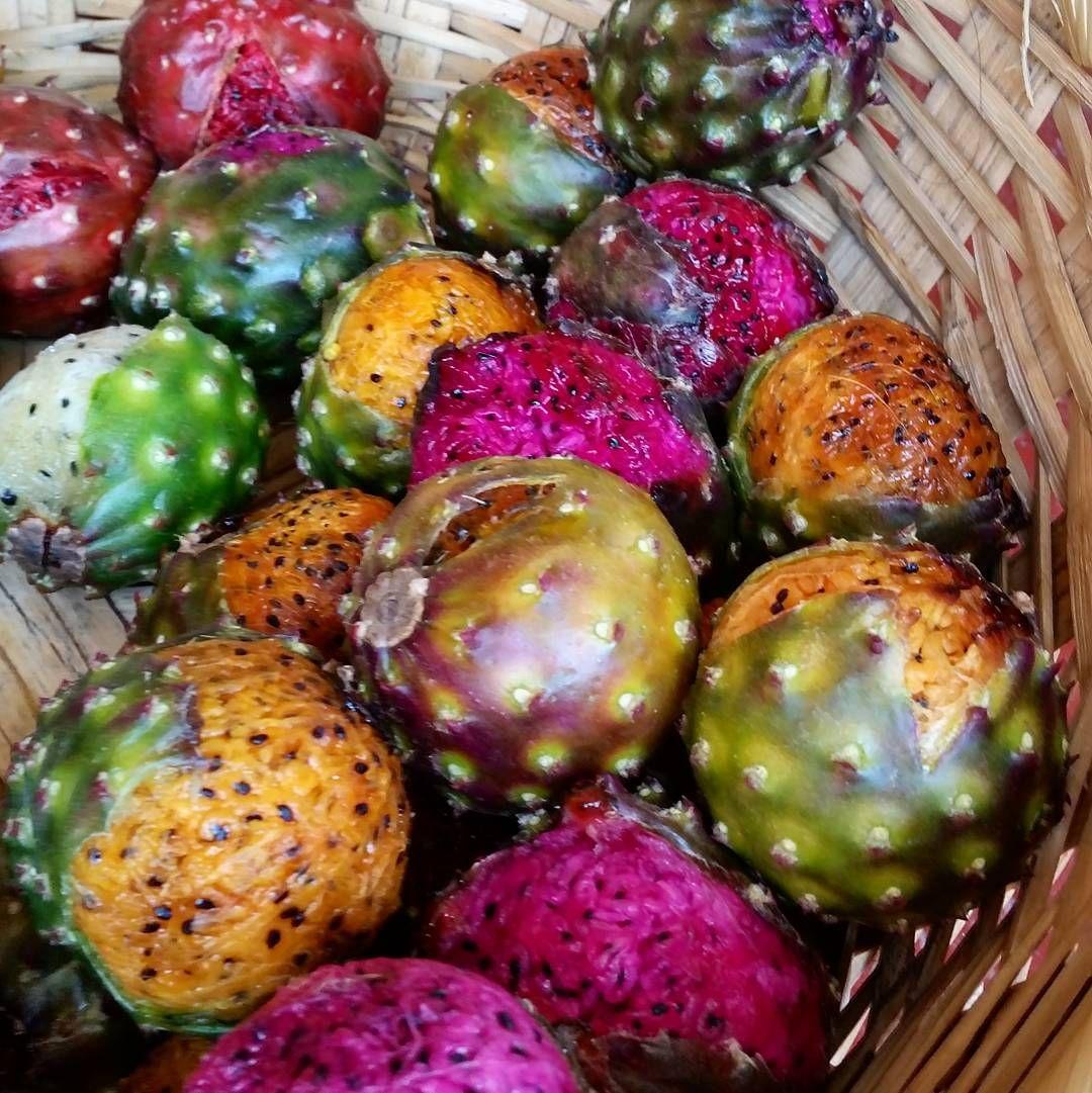 Los hermosos colores de las pitayas! Las más difíciles de pelar: las moradas! #festivalPitaya