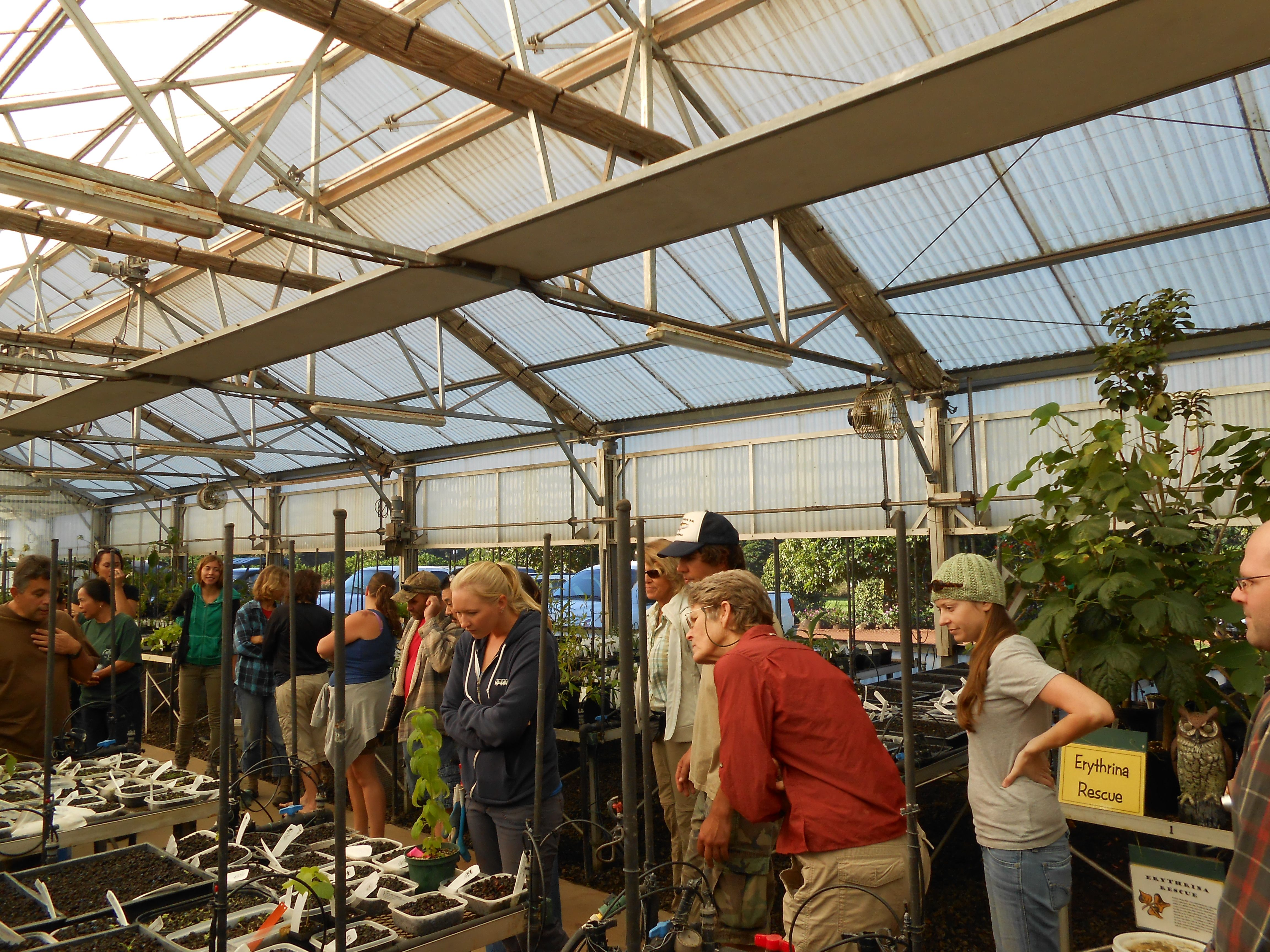 Attendees listen at the native plant nursery at NTBG | 1-19-2013 ...