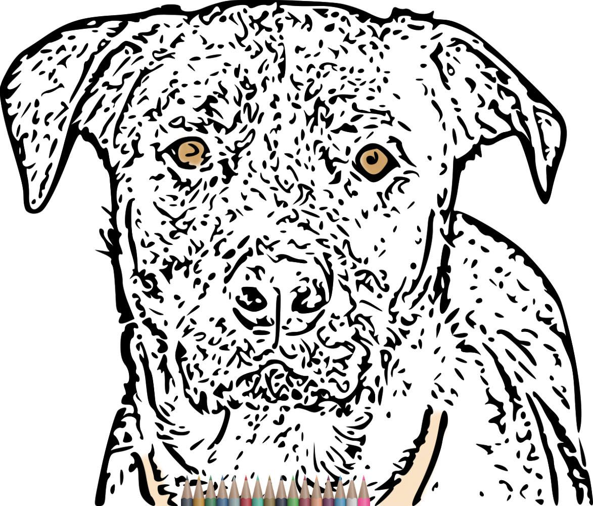 Adult Coloring Pages, Dog art print, Printable Coloring Pages for ...