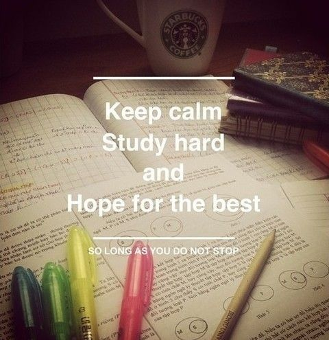 Study hard and hope for the best. #quotes #studyabroad