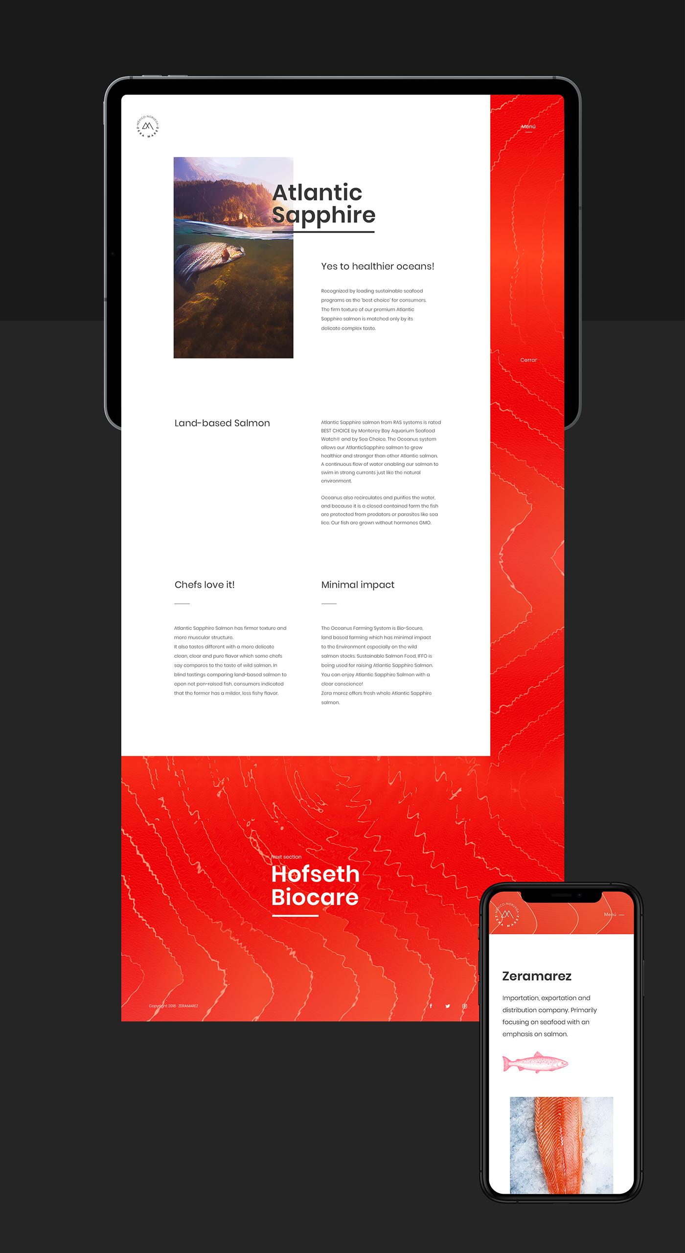 Zeramarez Webdesign On Behance Web Design Minimalist Web Design Email Design Inspiration