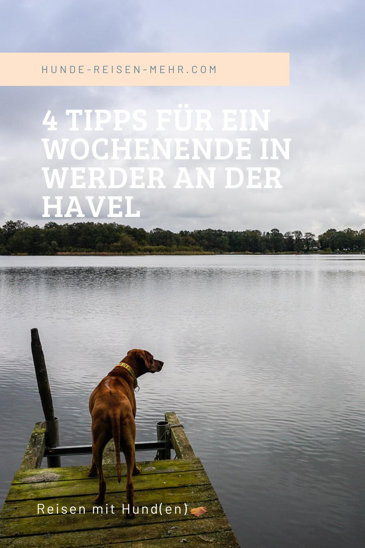 4 Tipps Fur Ein Wochenende In Werder An Der Havel Hundereisenmehr In 2020 Hund Reisen Urlaub Mit Hund Tipps