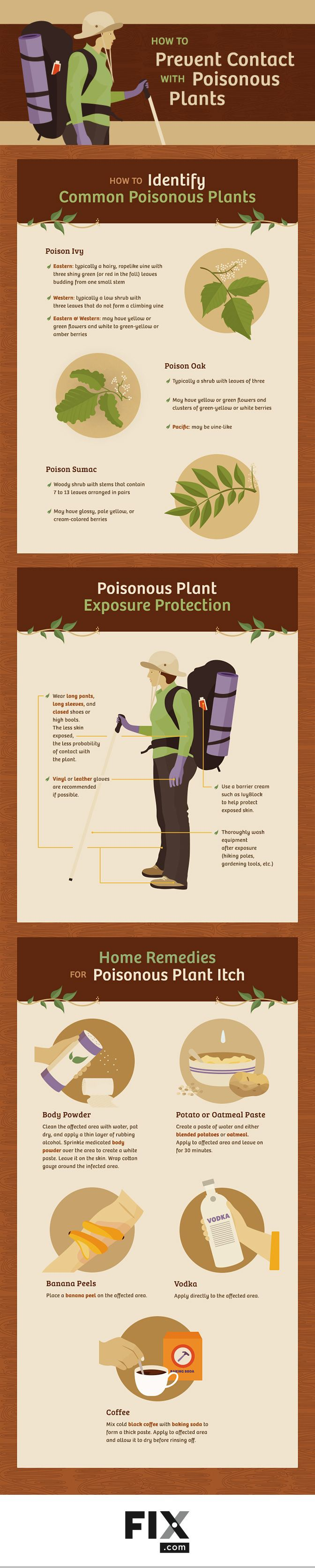 How to Prevent Contact With Poisonous Plants #infographic