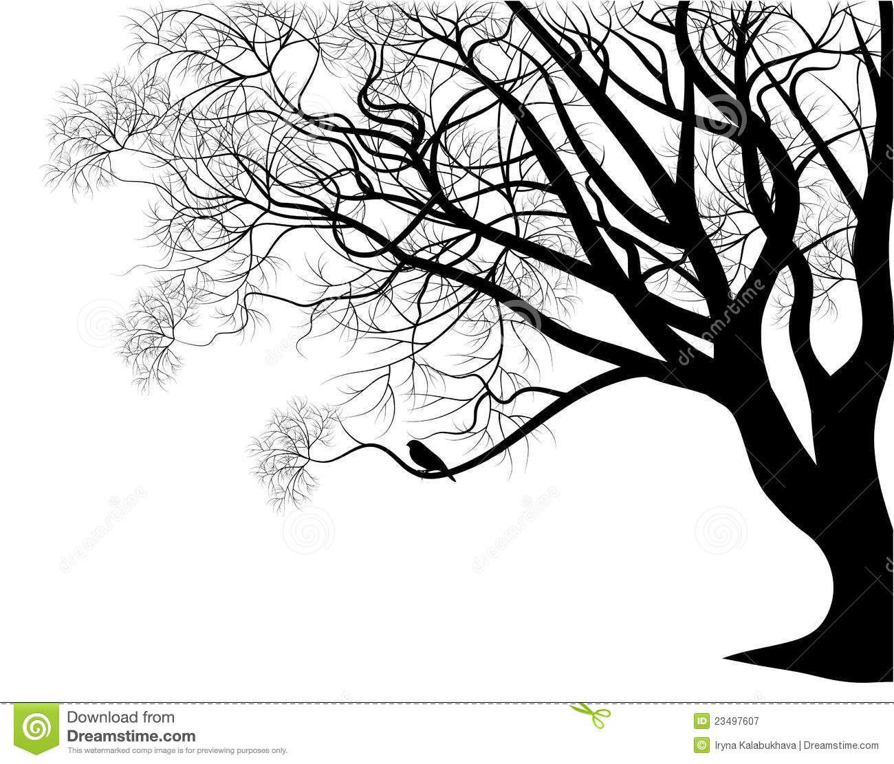Tree branch with birds stencil bird on a tree branch ideas for tree branch with birds stencil bird on a tree branch amipublicfo Gallery