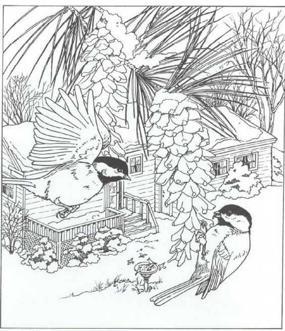 Coloring Page Nature Around The House
