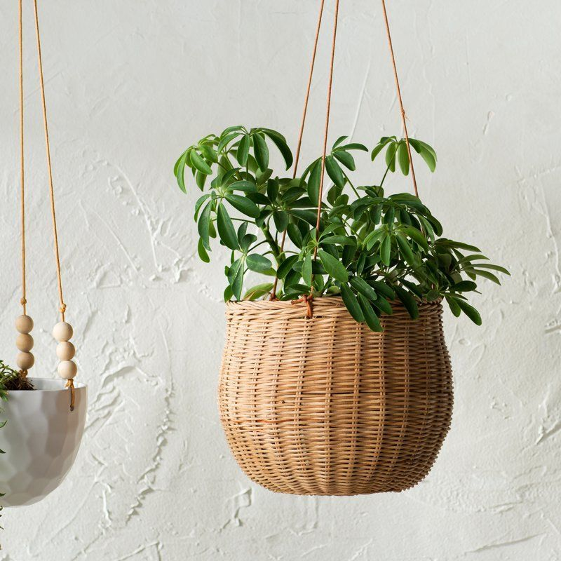 16 Magnificent Dark Wicker Furniture Ideas Hanging Plants Hanging Plants Outdoor Hanging Plants Diy