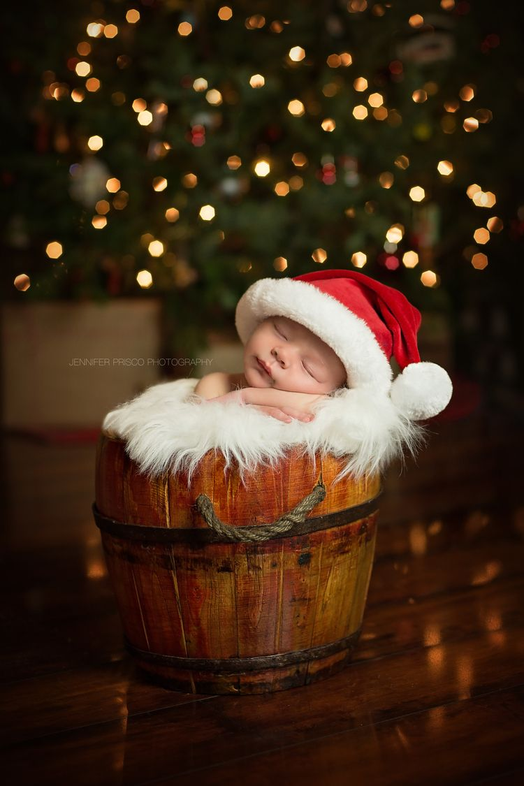 Newborn Christmas Shoot