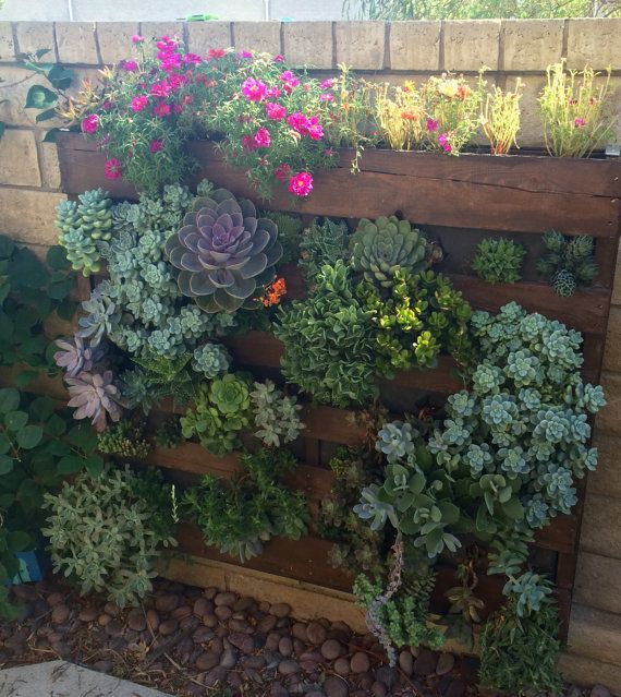 Vertical Succulent Garden Wall Mount By ProvincialGarden On Etsy