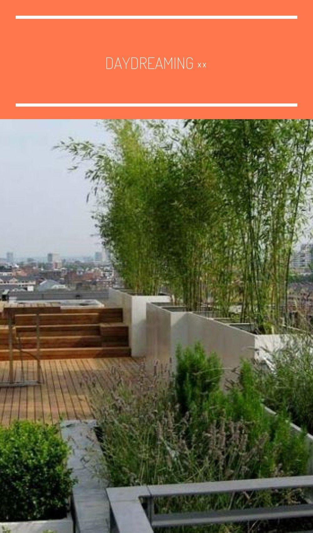 Daydreaming In 2020 Mit Bildern Dachterrasse Sichtschutz