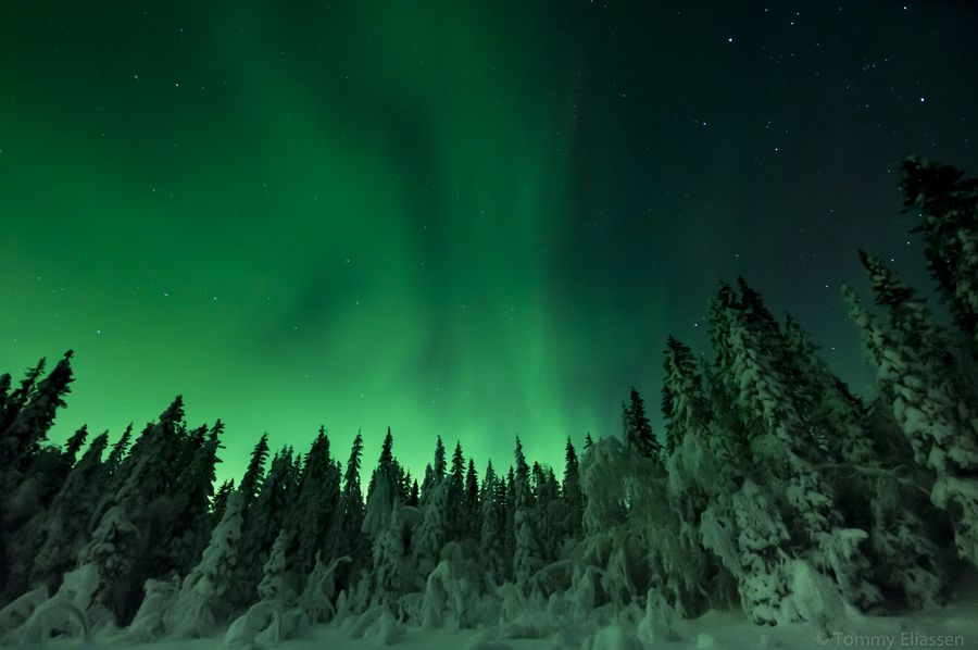 the northern lights are so breath taking, especially in this shade of green