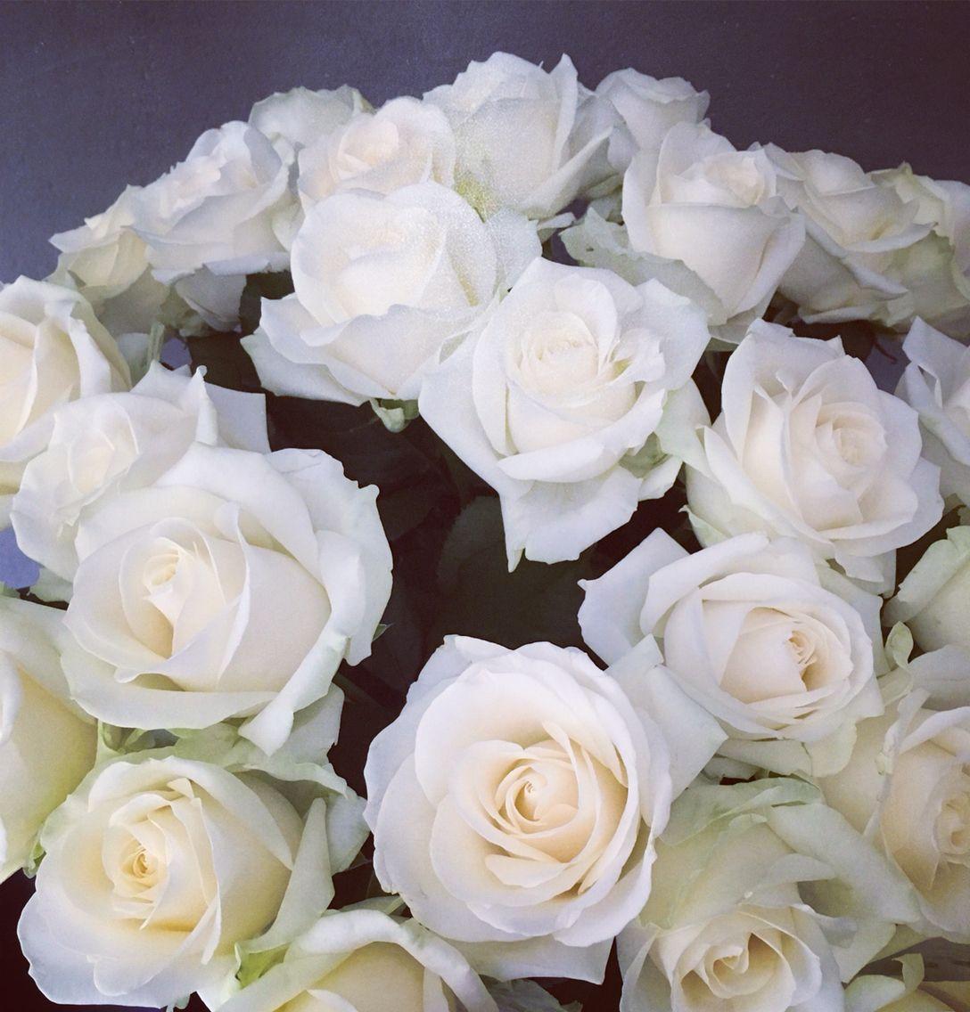 Roses ©kittyvanbarneveld