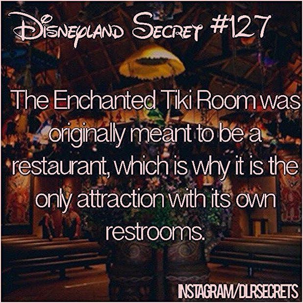 Photo of Disneyland secret 127