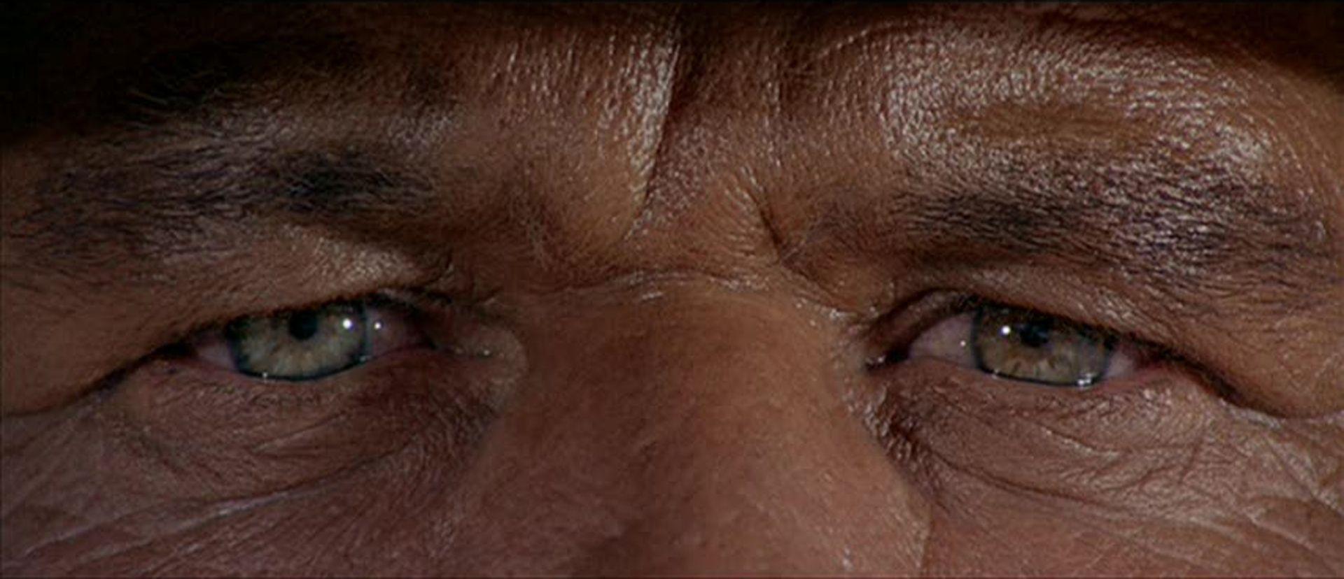 Resultado de imagem para olhos do charles bronson