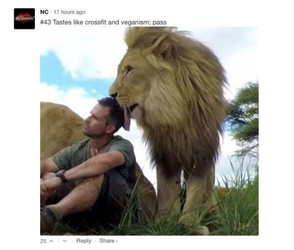 Get The 1 Meme App Cats Animals Cats Kevin Richardson