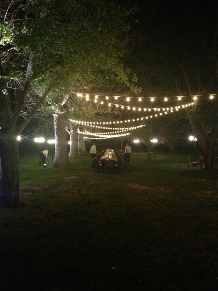 Festoon lighting outdoor orchard lighting pinterest wedding festoon lighting outdoor orchard aloadofball Choice Image