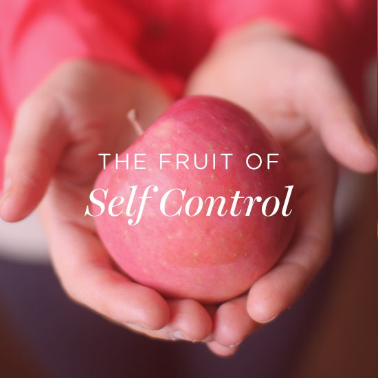 Image result for fruit of self control