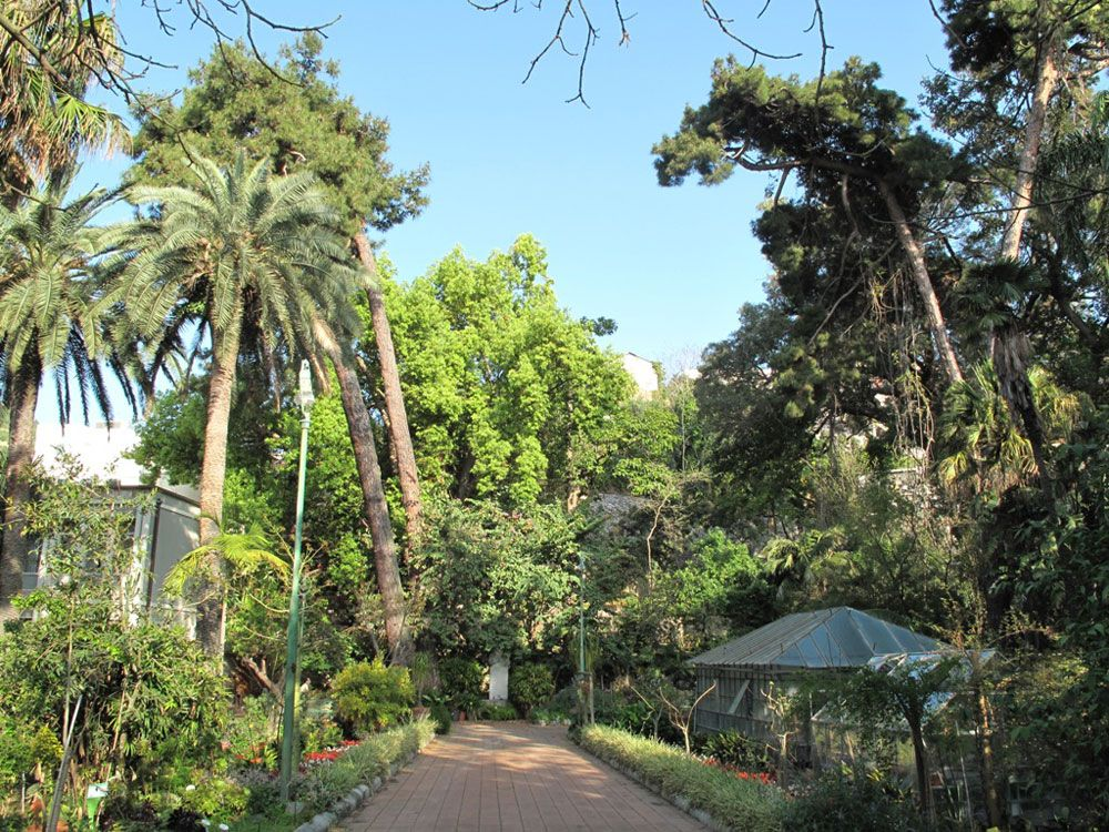 orto botanico de messina