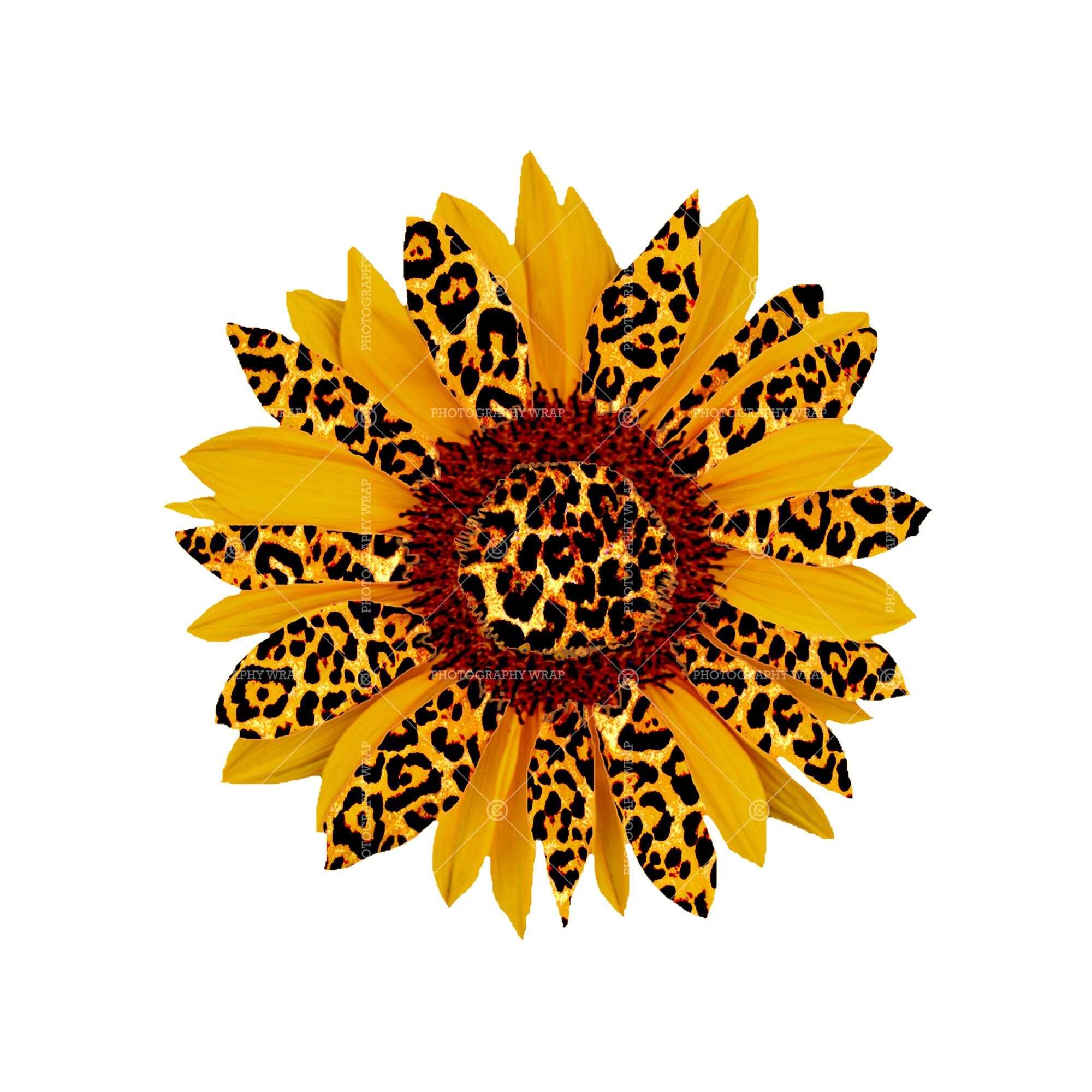 Excited To Share This Item From My Etsy Shop Leopard Sunflower Png Leopard Sunflower Sublimation Sunflower Png Sunflower Iphone Wallpaper Sunflower Images