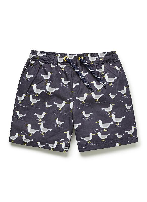 b2168efad7320 Boys Swimwear | Seagull Boardies | Seed Heritage | SUMMER 2019 ...