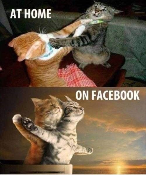 Home Vs. Facebook #funnythings