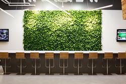 GSky, GSky Plant Systems, Green Wall, Vertical Green Wall, Living Wall,
