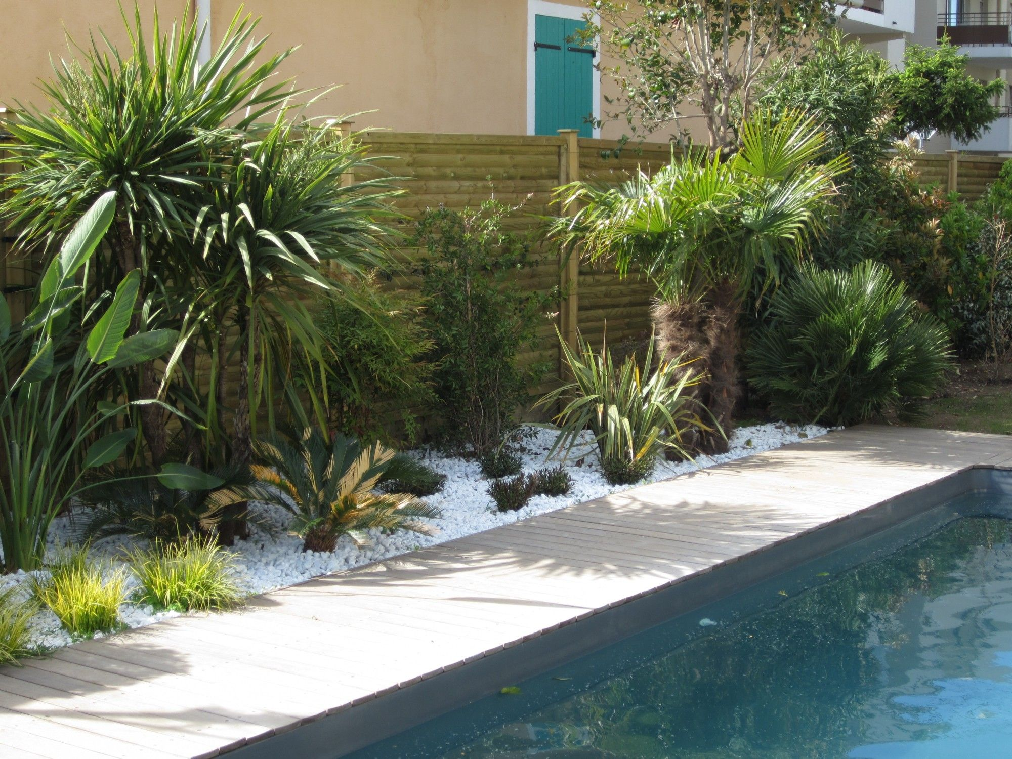 Cr ation d 39 un espace paysager en bord de piscine cr ation for Creation de jardin exotique