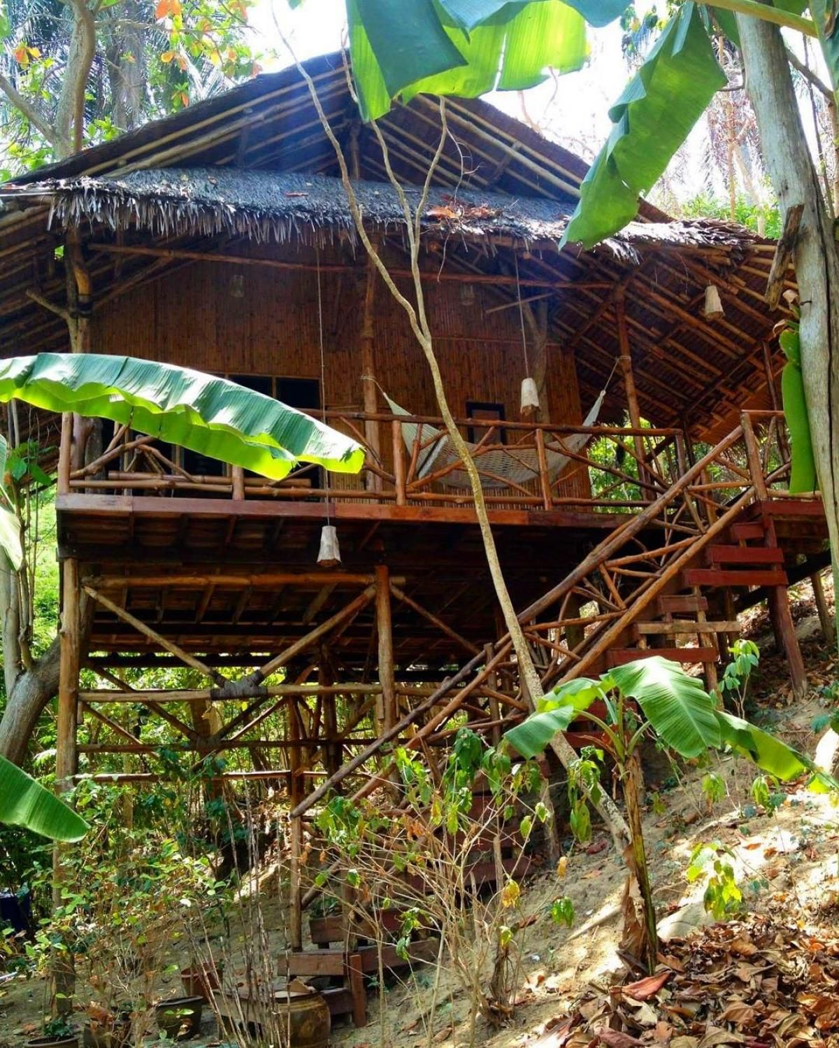 Bamboo House Information