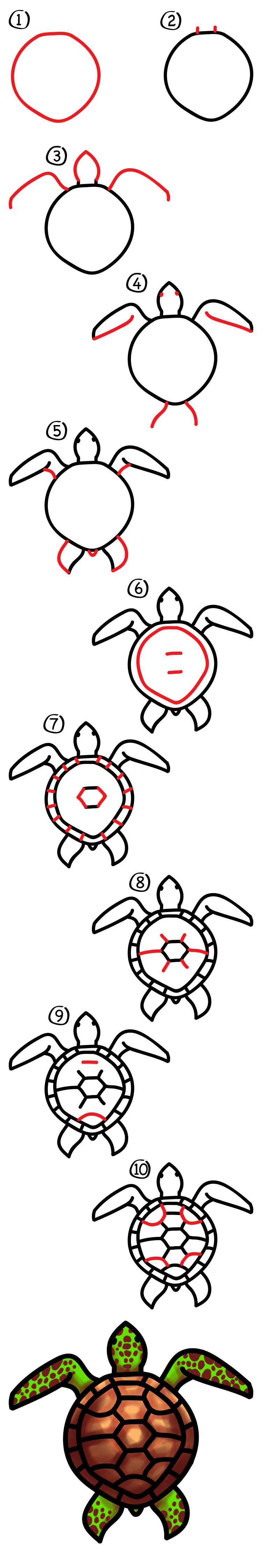 How To Draw A Realistic Sea Turtle - Art For Kids Hub -