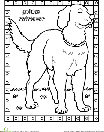 Color The Golden Retriever Dog Coloring Book Dog Coloring Page Cat Coloring Book