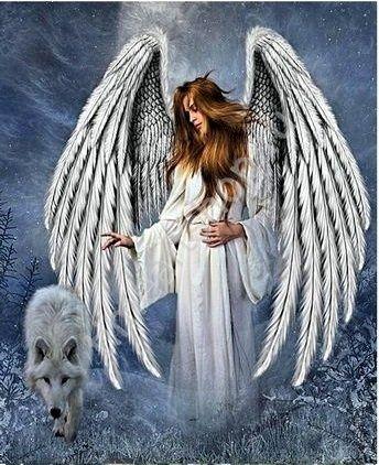 Рыжий Ангел и волк, картина раскраска по номерам, на ...