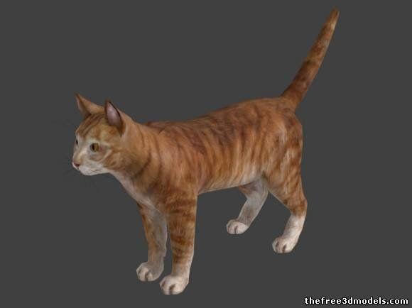 Cat 3d model free ucla cs 188 3d models asset pinterest cat 3d model free voltagebd Images